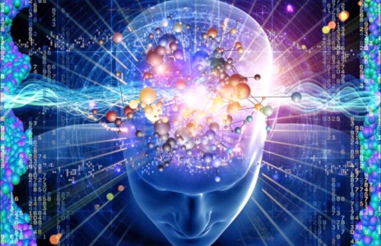 Знания о мозге, которые изменят ваше мировоззрение